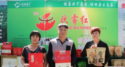 广西贵港市绿顿茶厂:野生茶 雾中行
