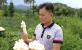 贵州省醉苗乡商贸公司:竹荪、羊肚菌、姬松茸 迷你没商量