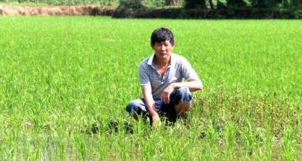 访全州县丰裕水稻种植专业合作社理事长唐华仔