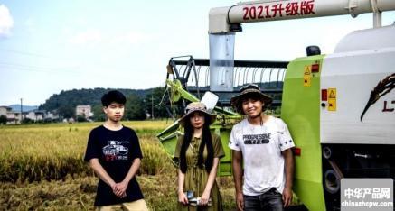 全州县丰裕水稻种植专业合作社早稻收割 农民喜气洋洋