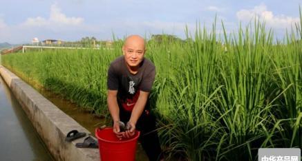 广西梧州田中农业有限责任公司 努力打造种养重要示范基地