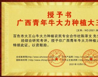 授予陈泽文为广西青年牛大力种植大王